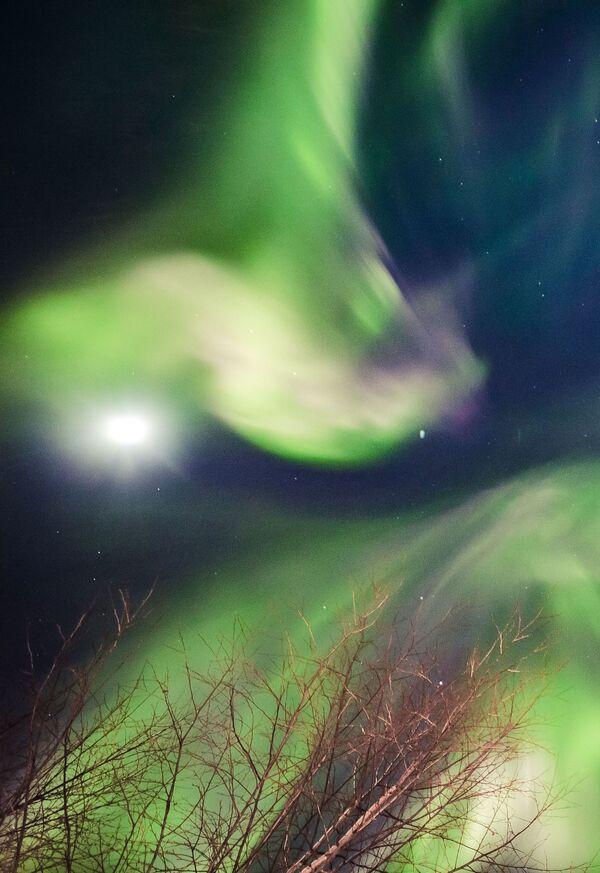 Polární záře ve finském městě Rovaniemi - Sputnik Česká republika