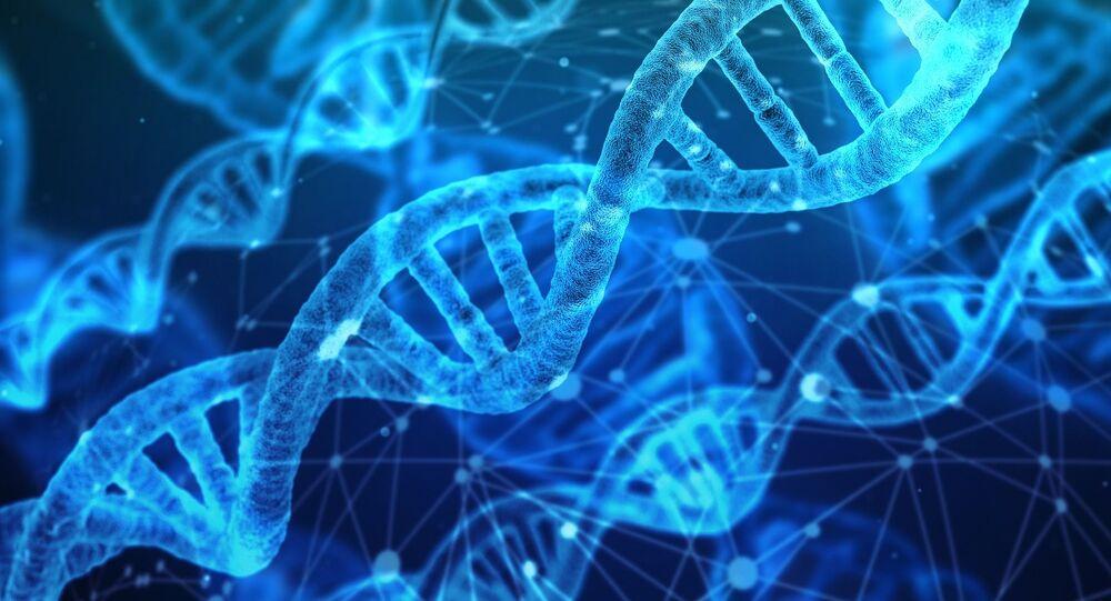 Molekuly DNA