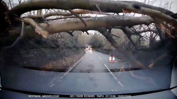 Strom spadl během bouře Sabine ve Velké Británii - Sputnik Česká republika