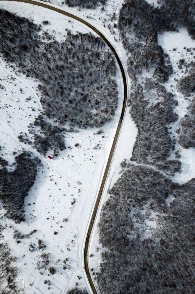 Les v oblasti osady Mezmaj. Krasnodarský kraj, Rusko.