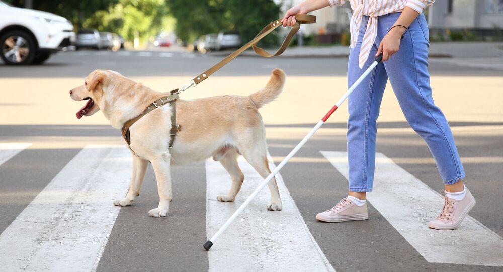 Slepá žena se psem