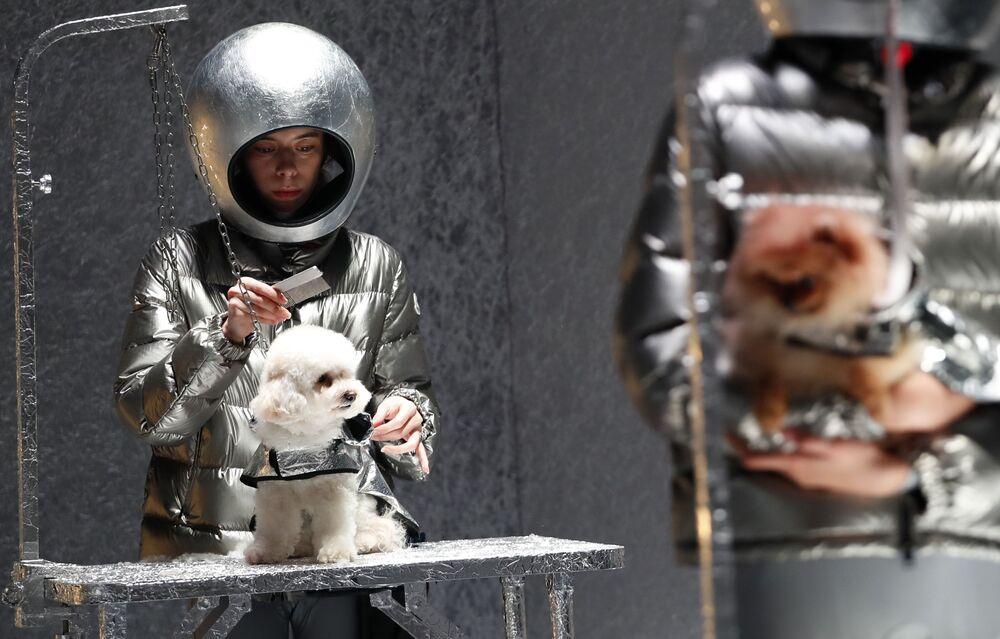 Modelky a psi předvádí kolekci Moncler na Týdnu módy v Milánu.