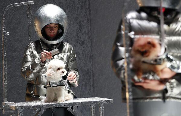 Modelky a psi předvádí kolekci Moncler na Týdnu módy v Milánu. - Sputnik Česká republika
