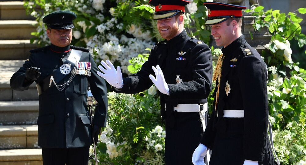 Prince Harry a prince William