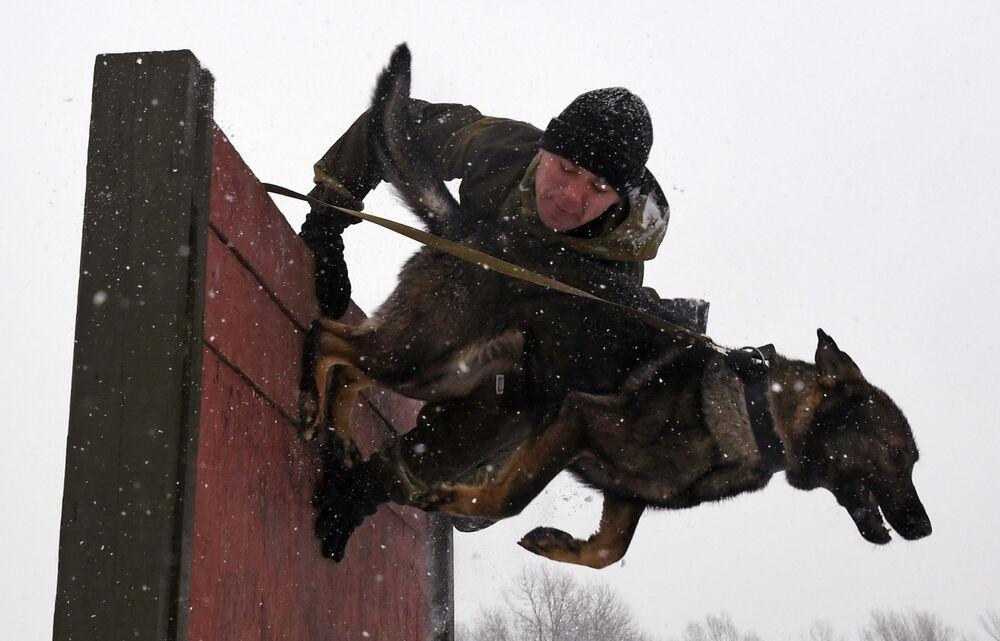 Kynolog se psem překonávají překážku. Soutěž vojenských kynologů Věrný přítel v Ussurijsku, Rusko.