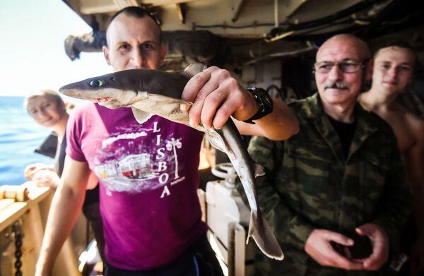 Členové týmu zkoumají uloveného žraloka na palubě lodi Admiral Vladimirskij na cestě do Montevidea - Sputnik Česká republika