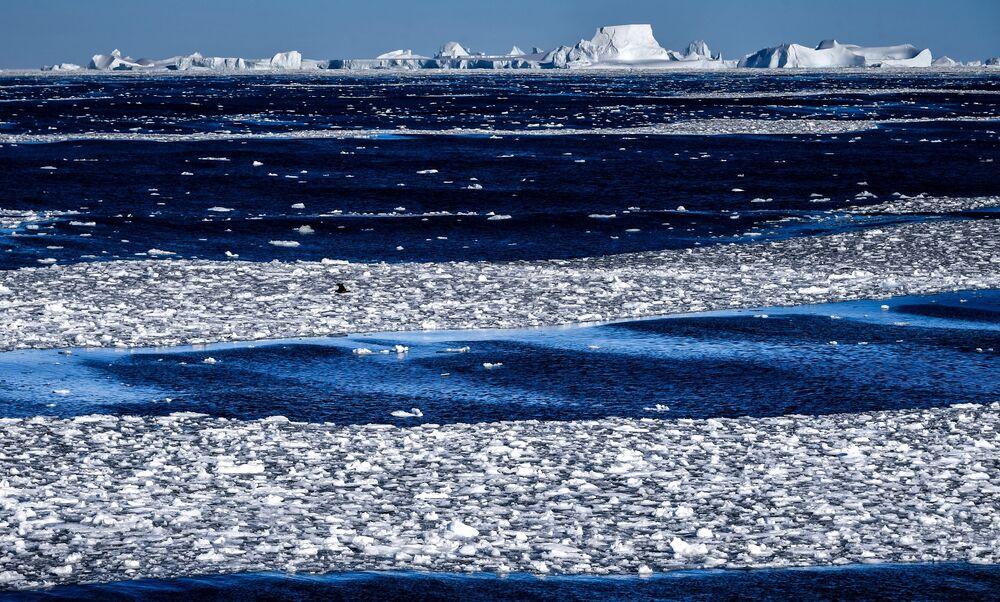 Pohled na Wilkinsův ledový šelf z lodi Admiral Vladimirskij  během plavby na antarktickou stanici Bellingshausen