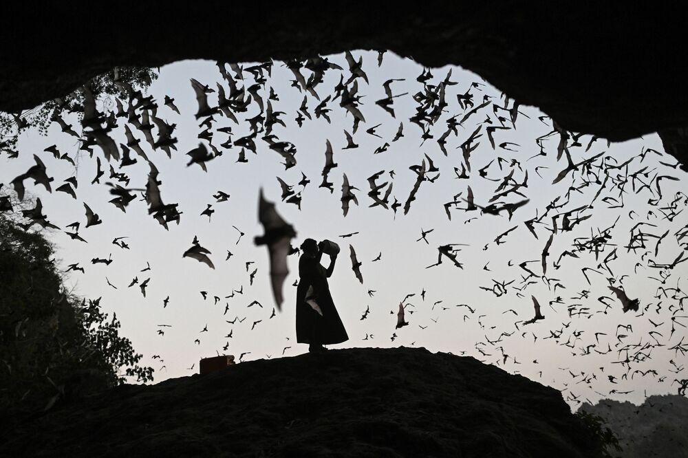 Žena plaší netopýry, Myanmar