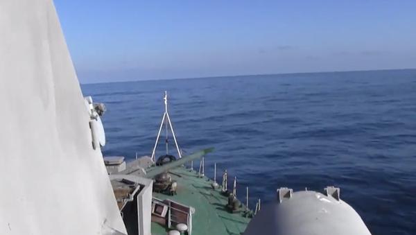 Video: Na území Ruska proběhly ohromující dělostřelecké a raketové palby - Sputnik Česká republika