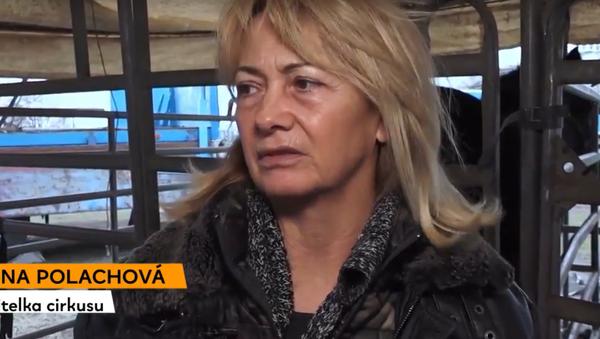Obyvatelé Rigy pomáhají českým umělcům, kteří ve městě uvízli kvůli koronaviru - Sputnik Česká republika