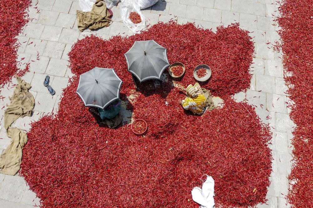 Dělníci suší červené chilli papričky na nábřeží řeky Jamuny, Bangladéš, 17. března 2020