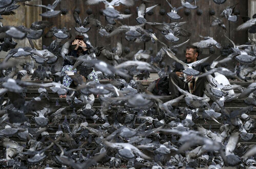 Hejno holubů na ulici v Bogotě