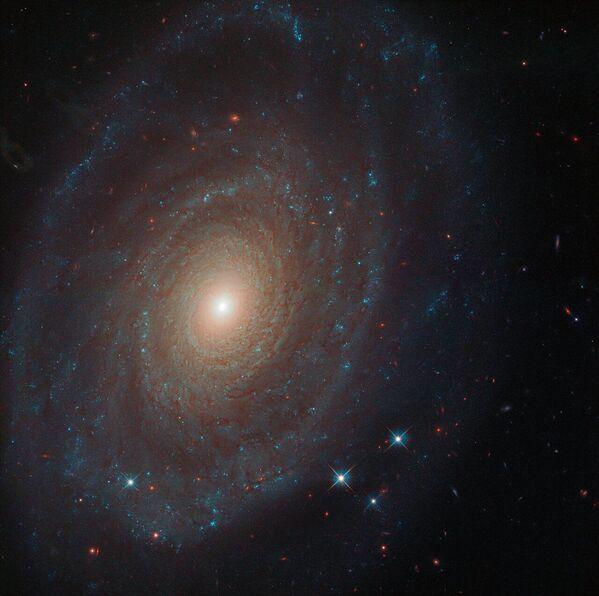 Spirálovitá galaxie NGC 691 - Sputnik Česká republika