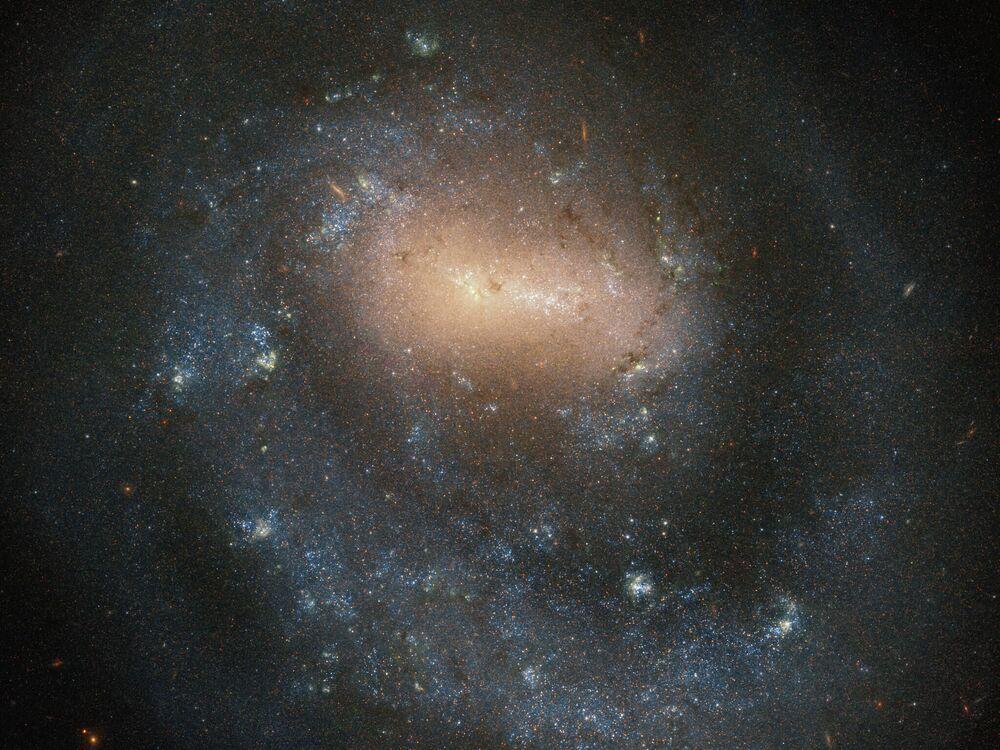 Galaxie NGC 4618 v souhvězdí psi