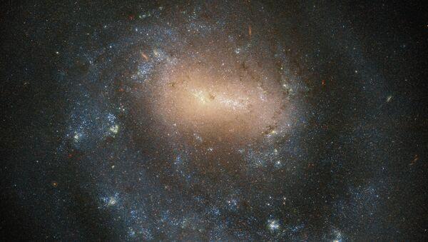 Galaxy NGC 4618 v souhvězdí Canis Hounds - Sputnik Česká republika