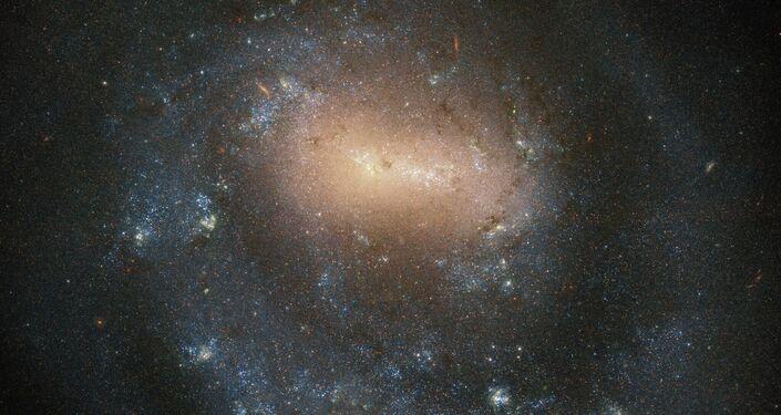 Galaxy NGC 4618 v souhvězdí Canis Hounds