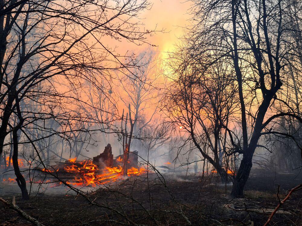 Hořící les poblíž vesnice Rahivka v Černobylské uzavřené zóně