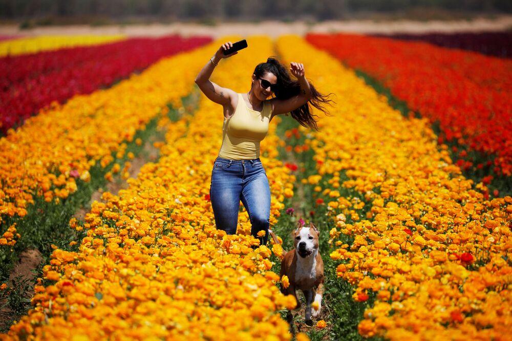 Žena se psem v květinovém poli v Izraeli, kibuc Nir Jicchak