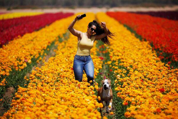 Žena se psem v květinovém poli v Izraeli, kibuc Nir Jicchak - Sputnik Česká republika