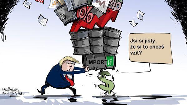 Saúdskou ropu si nemůžete jednoduše vzít a nekoupit - Sputnik Česká republika