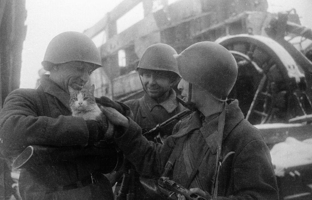 Fotografie Mírové vzpomínky. Stalingrad, 1943.