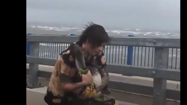 Žena se během uragánu Dorian pustila na mostě do záchrany pelikánů. Jak to skončilo? - Sputnik Česká republika