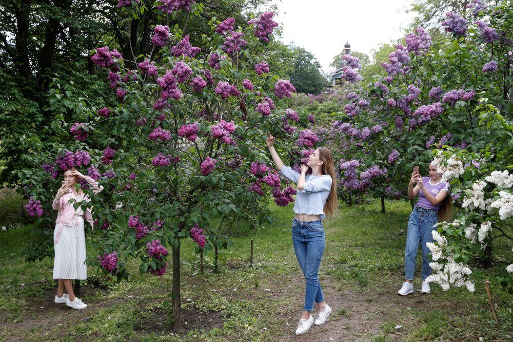 Dívky a kvetoucí lila v parku v Kyjevě, Ukrajina