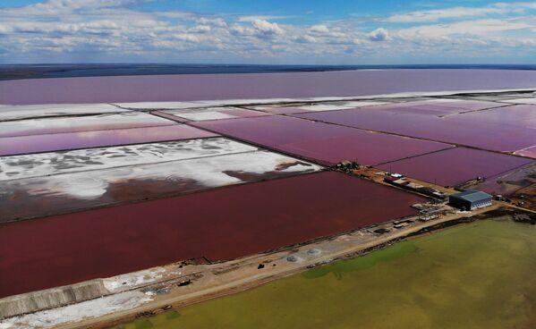 Sasyk-Sivaš: Růžové jezero a unikátní přírodní skvost ruského Krymu - Sputnik Česká republika