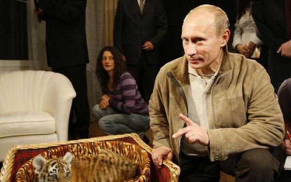 Málokdo na světě se může pochlubit tím, že dostal k narozeninám tygří mládě a Vladimir Putin patří mezi ně - Sputnik Česká republika