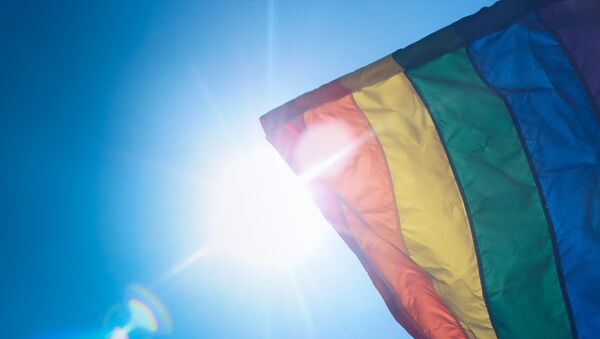 Vlajka LGBT - Sputnik Česká republika