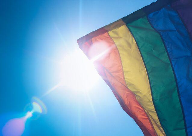 Vlajka LGBT