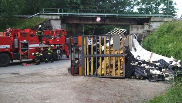 Nehoda kamiónu s kuřaty u Chýnova si vyžádala dva lidské životy - Sputnik Česká republika