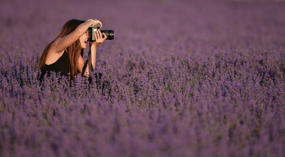 Dívka fotí na levandulovém poli na Krymu
