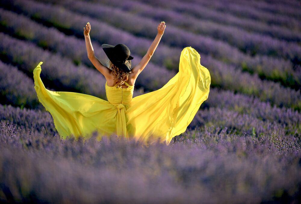 Dívka na levandulovém poli na Krymu