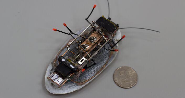 Robot-rozvědčík v podobě švába