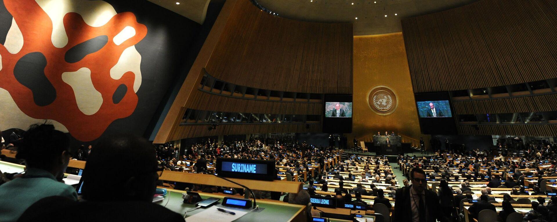 Sál zasedání Valného shromáždění OSN v New Yorku - Sputnik Česká republika, 1920, 29.07.2021