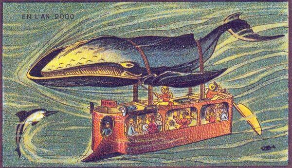 A znovu mořský svět, velryba-autobus. Vypadá jako kočka-autobus z animace Mijazakiho - Sputnik Česká republika