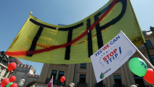 Demonstrace proti TTIP v Mnichovu - Sputnik Česká republika