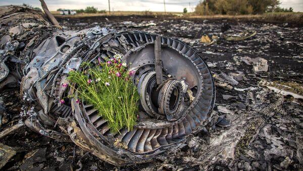 Místo havárie malazijského Boeingu - Sputnik Česká republika