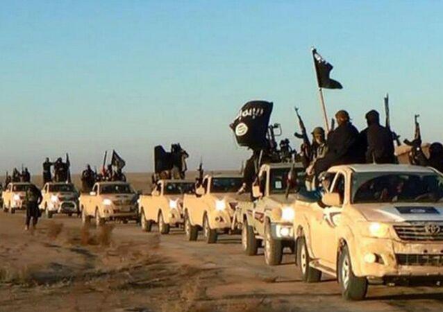 Bojovníci ISIL