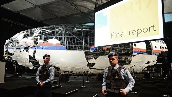 Vystavené trosky letounu MH17 - Sputnik Česká republika