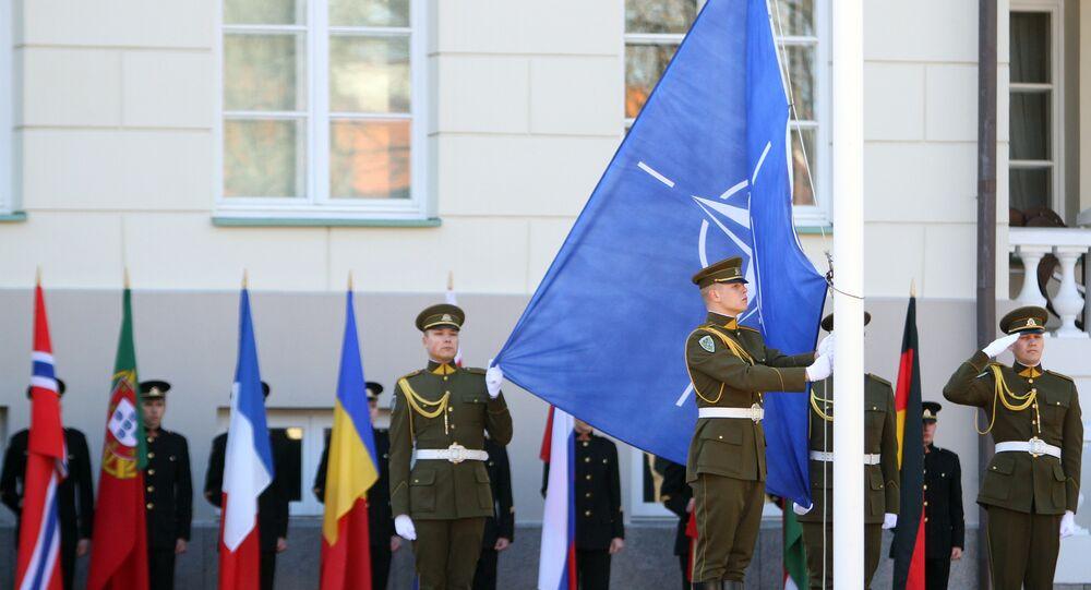 Vlajka NATO, Litva