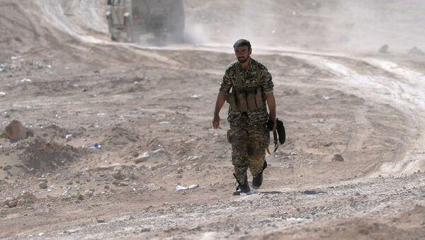 Íránský bojovník v okolí Palmýry - Sputnik Česká republika