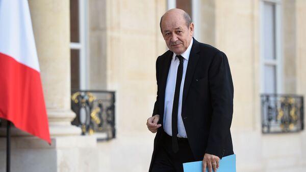 Francouzský ministr zahraničí Jean-Yves Le Drian - Sputnik Česká republika