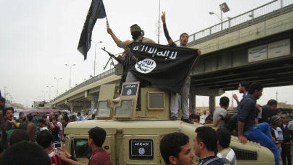 Automobil, který bojovníci zabavili irácké armádě - Sputnik Česká republika