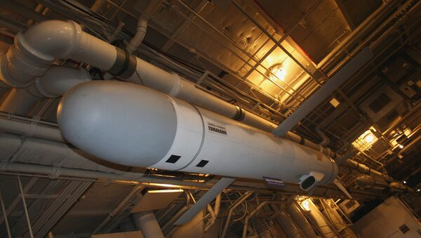 Raketa Tomahawk - Sputnik Česká republika
