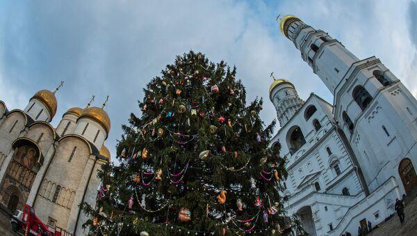 Hlavní novoroční stromeček Ruska byl doručen do hlavního města z Moskevské oblasti - Sputnik Česká republika