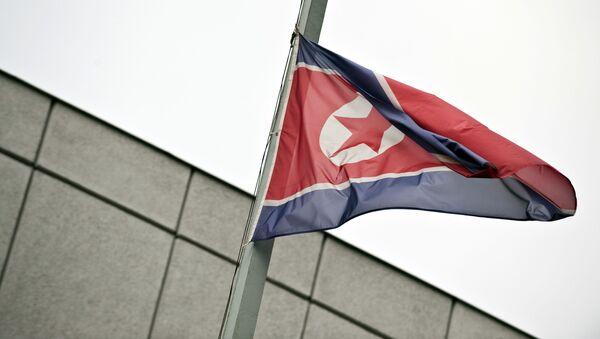 Vlajka KLDR - Sputnik Česká republika