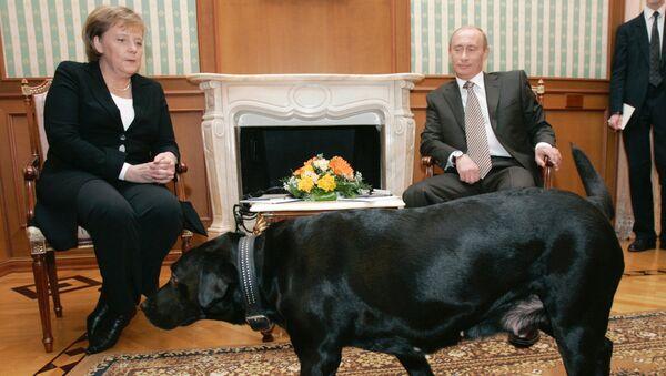 Jednání Putina a Merkelové v Soči, 2007 - Sputnik Česká republika