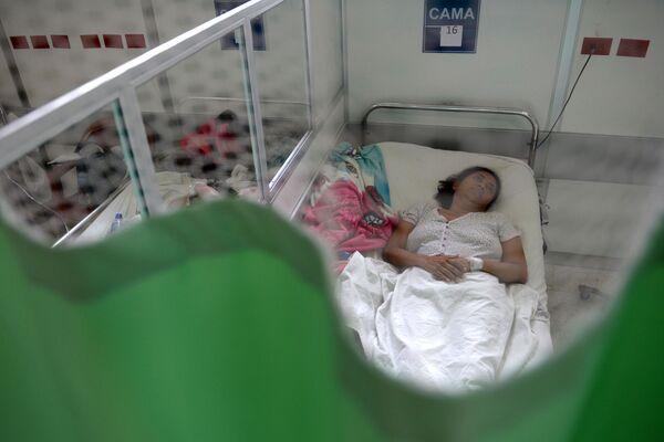 Boj proti viru Zika - Sputnik Česká republika
